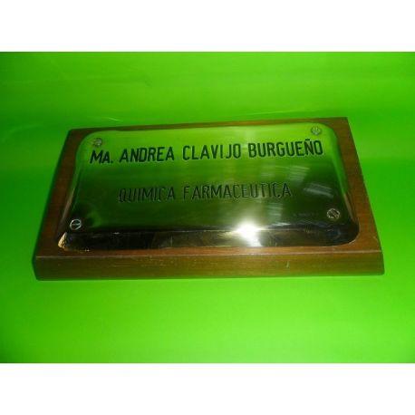 Placa profesional de bronce bombé