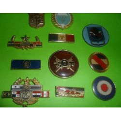 Piochas y distintivos policiales y militares. Varios modelos