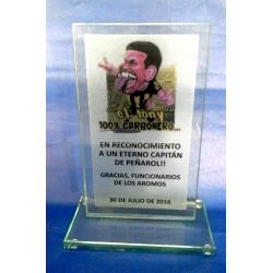 Placa vidrio estampado